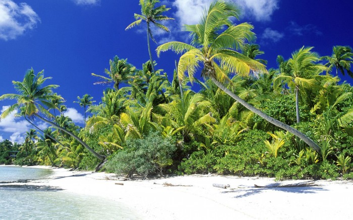Palm Beach, Solomon Islands. Image credit not found. TravelSeeLove.com does not claim any rights to this image.