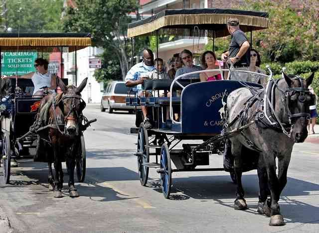 While in Charleston, take a horse carriage tour. Photo credit: wade spees/staff postandcourier.com