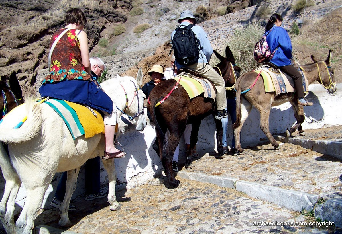 A donkey ride is a common mode of transportation around Santorini