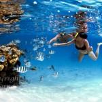 Snorkelers, schools of fish and Coral Reef. Aitutaki Lagoon, Cook Islands