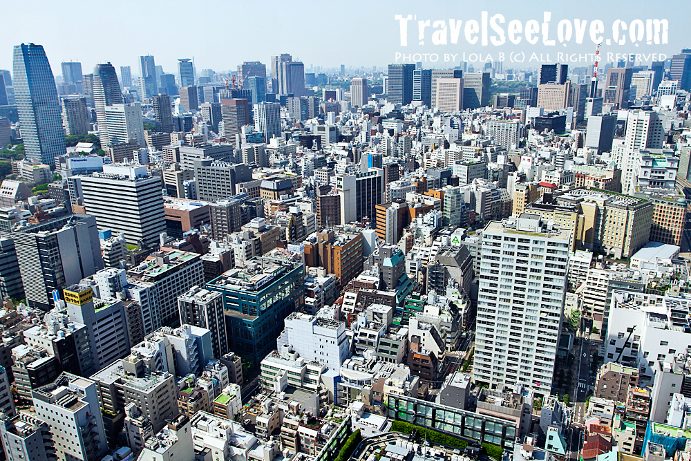 View from atop the Tokyo Tower