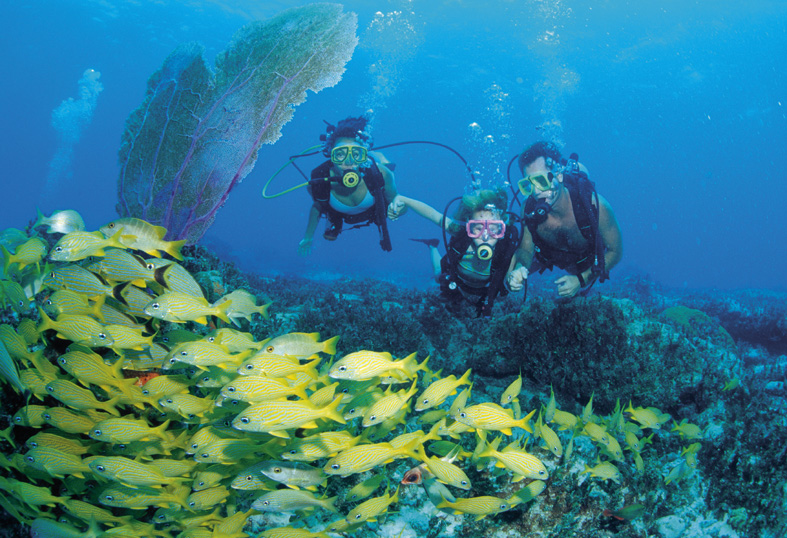 Bahamas Scuba Diving. Image credit not found. TravelSeeLove does not claim any rights to this image whatsoever.