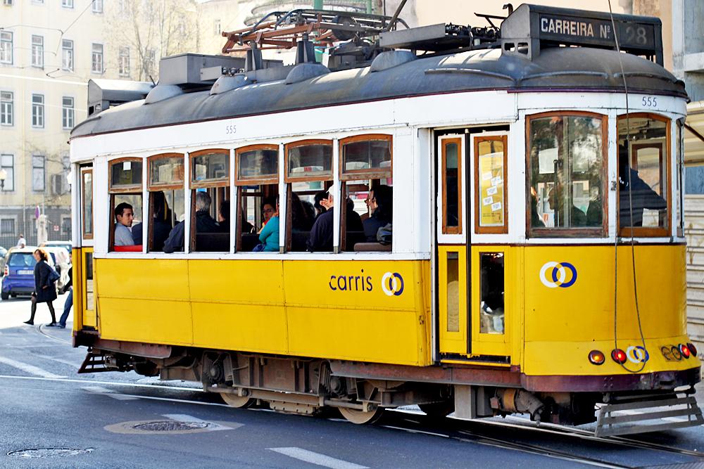 Trams run through the city